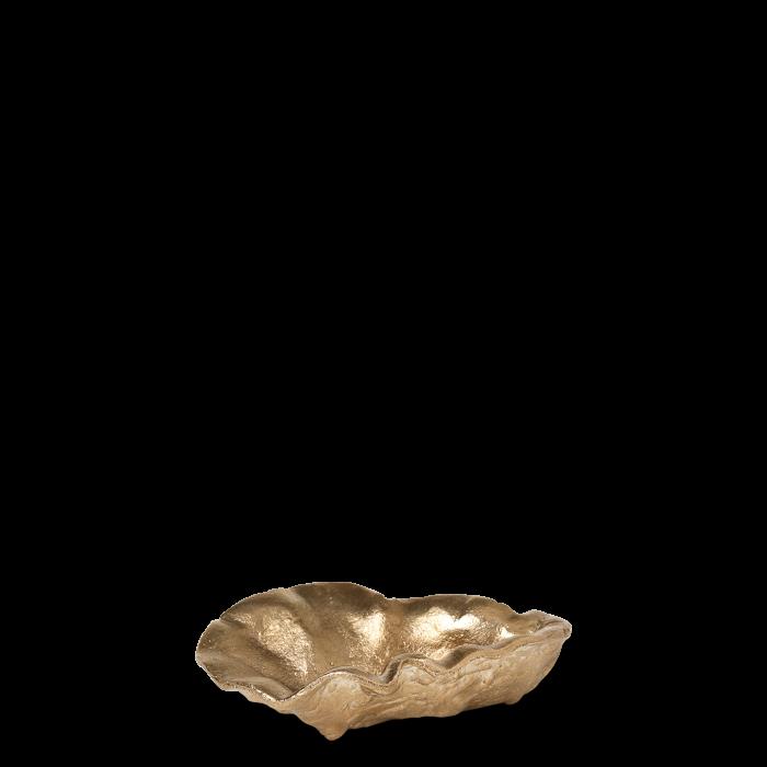 Oyster Schale Brass