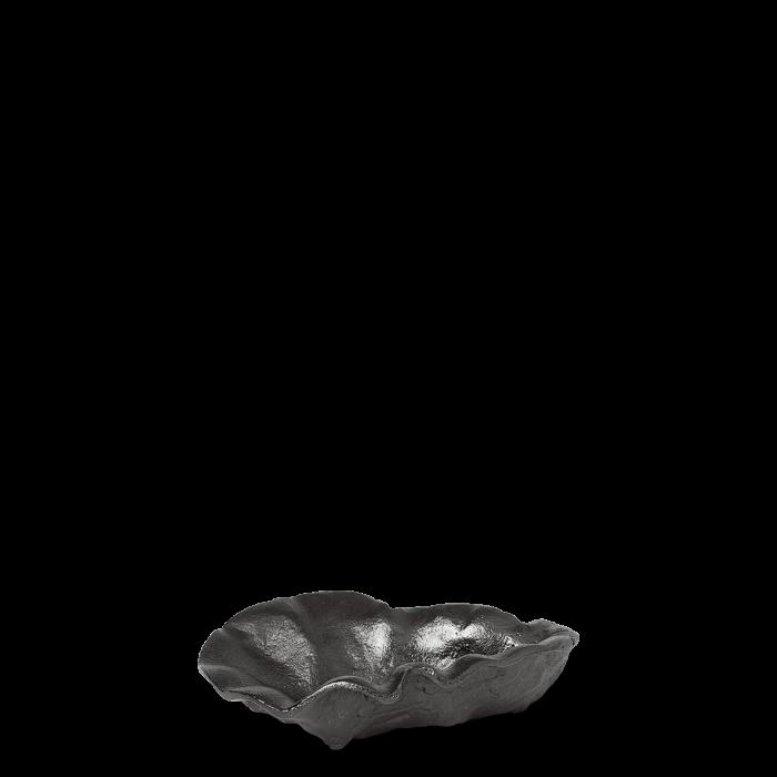 Oyster Schale Black Brass